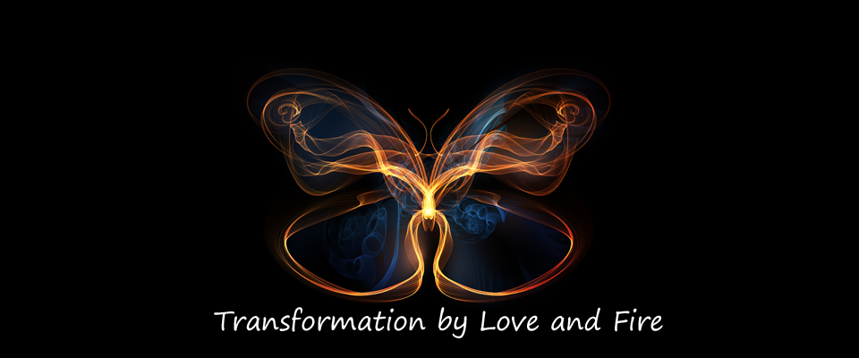 ButterflyTransformation